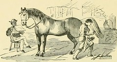 """Image from page 209 of """"The standard horse book, comprising the taming, controlling and education of unbroken and vicious horses"""" (1895)"""