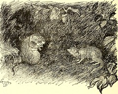 "Image from page 209 of ""The jungle book"" (1894)"