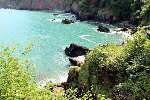woody bay devon