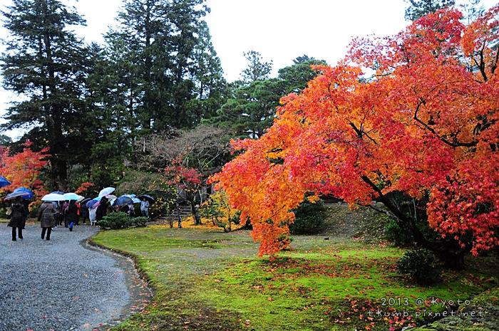 2013修學院離宮 (2).jpg