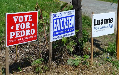 Vote for Pedro Washington Cascades 2014_0030