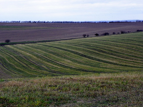 2014 cambridgegoc england field gayoutdoorclub goc gocashwell goccambridge hertfordshire landscape stripe stripy view z981 ashwell kodakeasysharez981 kodak uk