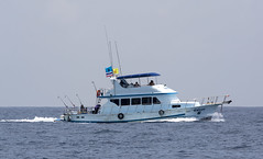 ship(0.0), fishing trawler(0.0), patrol boat(0.0), coast(0.0), vehicle(1.0), sea(1.0), watercraft(1.0), boat(1.0), coast guard(1.0),