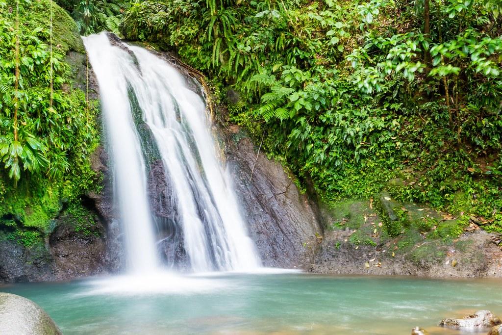 Guadeloupe 014-7