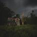 storm by Jamie Betts Photo