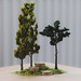 The Tiny Trees Project 00002