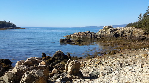 Coastline in Acadia National Park