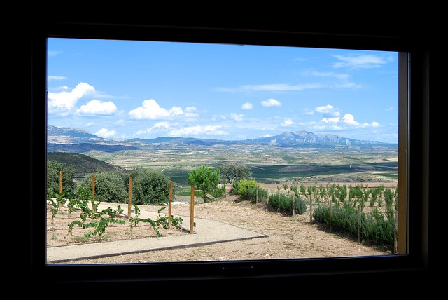 Campo Viejo's Winery Confrence Room View