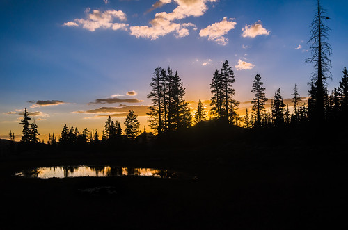 camping sunset mountain tree pine clouds utah back pond nikon country bald backpacking periwinkle d7000
