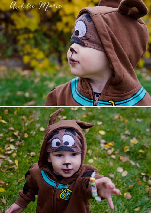 mystery incorporated scooby doo costume