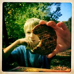 Picnic Cookie
