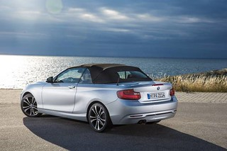 BMW 2014 Convertible 228i 31