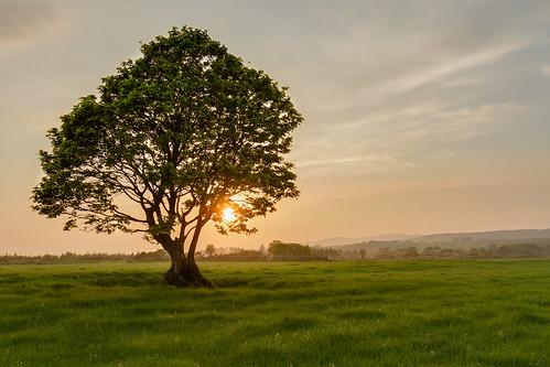 ireland nature rural canon landscape wildlife hdr donegal inishowen 1755