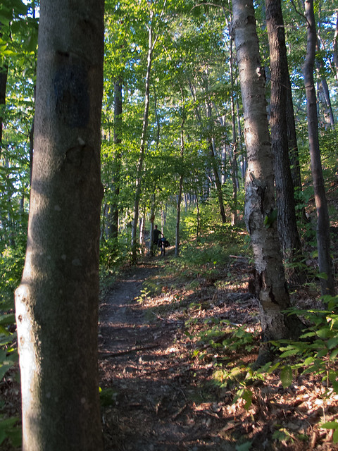Chandler Ridge Trail