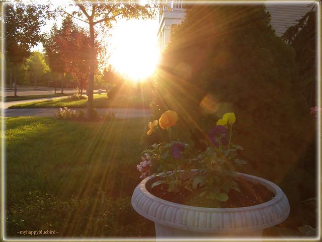 ~ glorius autumn sunrise...
