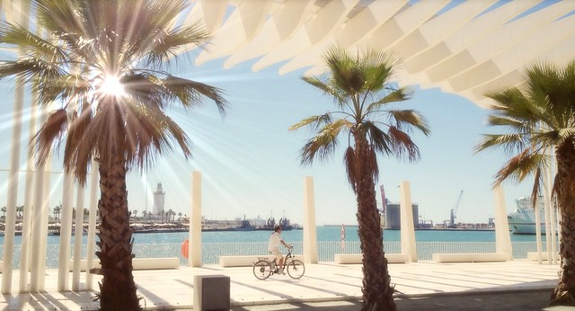 Malaga Port .. The Palm Garden of Surprises