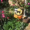 """When I woke up this morning, it was """"Brrrrrrrr! Cold!"""" ... so I guess it's official. Time to change the flag! LOL  #autumn #halloweendecor #gardenflag"""