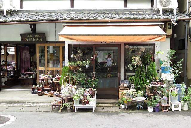 Kyoto guide www.apairandasparediy.com