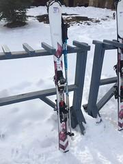 レンタルしたスキー