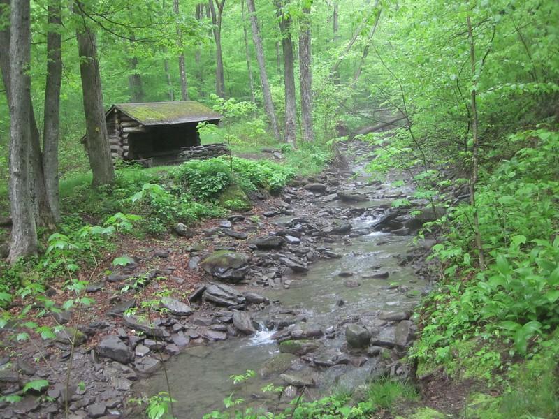 Shandaken Creek Lean-To and Shandaken Creek