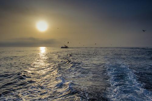 sea japan sunrise 日本 toyama 15mm kx himi 氷見 富山