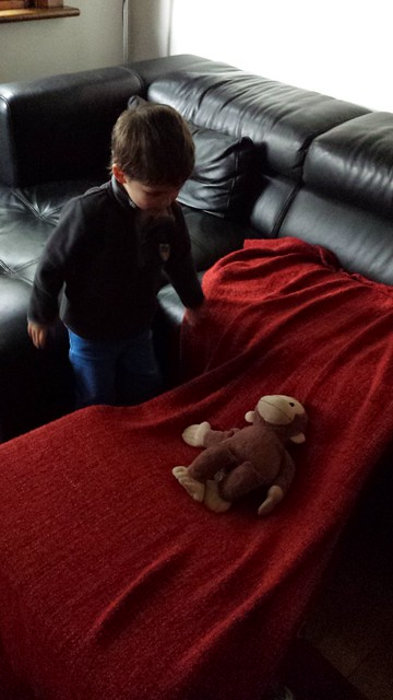 Making a bed for Monkey George