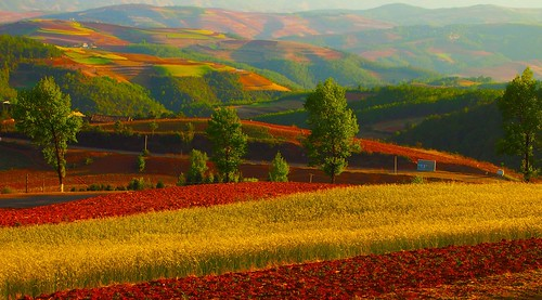 china red photography colours country olympus elite lands yunnan cina coutryside dongchuan flickrtravelaward
