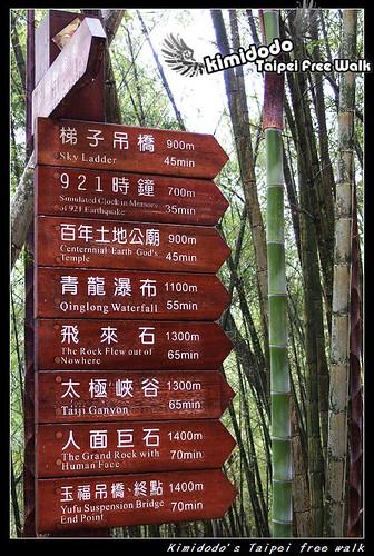 天梯 (6)