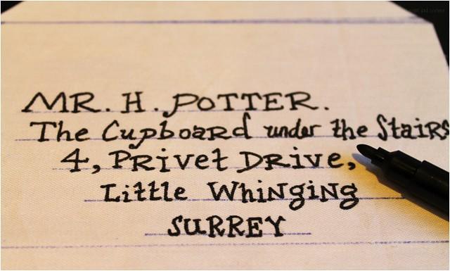 harry potter pouch 2
