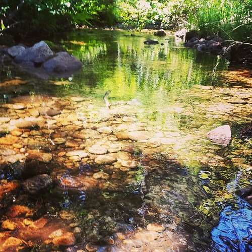 Creek colors #summer #river #sierra