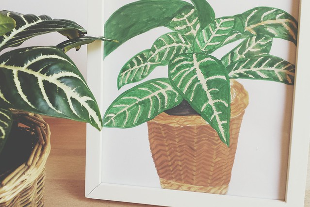 workspace wednesday: painting plant portraits