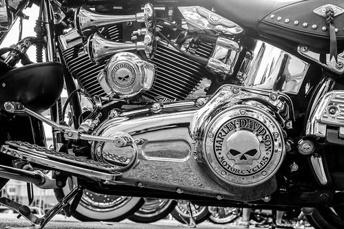 Harley-Davidson heart