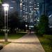 Kinshi Park midnight (深夜の錦糸公園)