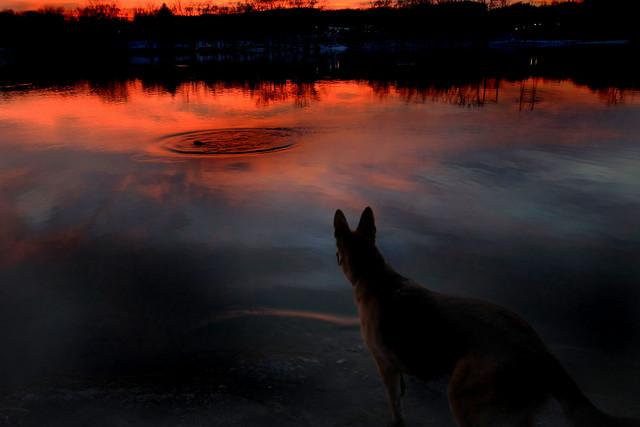 Facing the Sunset