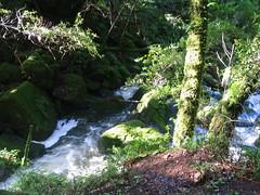 Cataract Falls Hike 036