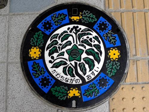 Kawachinagano Osaka, manhole cover (大阪府河内長野市のマンホール)