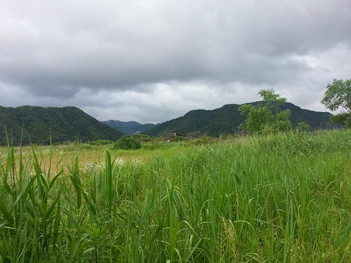 japan kinosaki