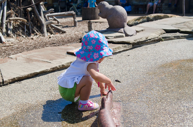 20140823-Cleveland-Zoo-Trip-3306