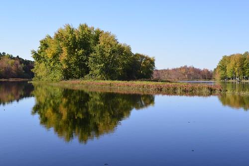 autumn lake ontario water leaves nikon day clayton ottawa clear d610 24120 claytonlake westcarletonmarch