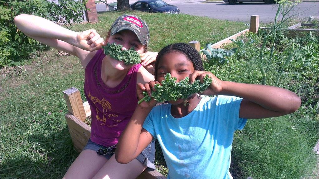 Városi kertészkedés