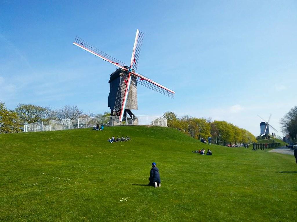 Molinos - Windmills #bruggewindmills #brugge #brujasbelgica #flandes #belgium #photography #brujas