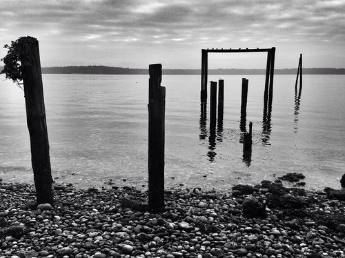 bw monochrome vashonisland iphone project365 500px 155365 iphone365 iphoneography snapseed