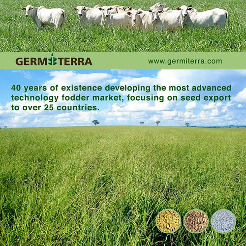 Contact Germiterra Seeds by encuentroedublogs