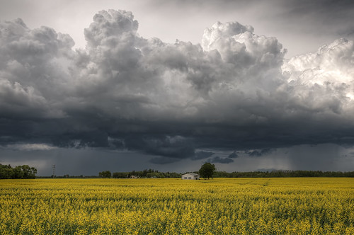 sky storm manitoba springfield hdr stormclouds canola rainclouds dugald stormyskies nikkor1024mm morrismulvey