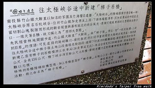 天梯 (11)