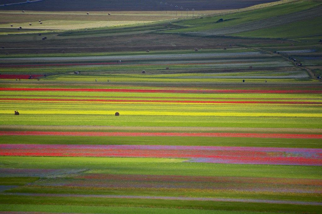 Colors in Castelluccio do Norcia