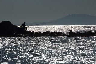 Fishing on silvered sea