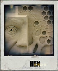 hexCodePolaroid