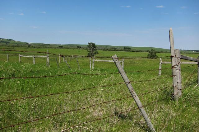 Springbank road fence flickr photo sharing
