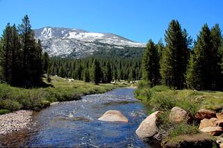 Dana Creek III